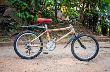 Trendy Bike